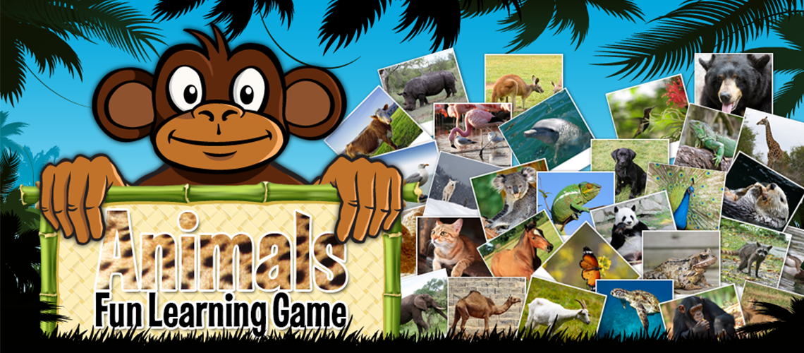 Animals Learning Game Design Project
